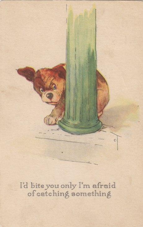 Twelvetrees Dog
