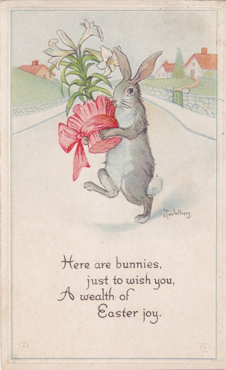 Twelvetrees Bunny #3