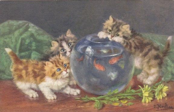 Merlin Cats